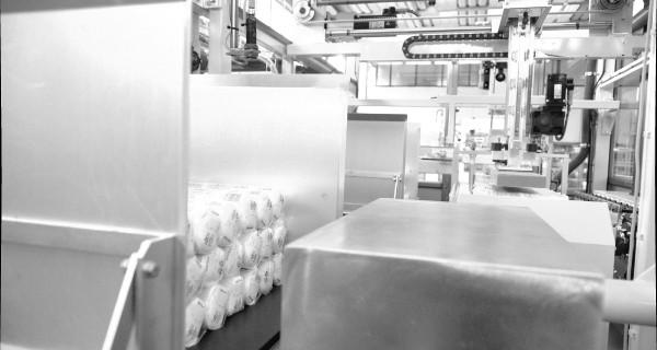 MICROLINE: Incartonatrice Orizzontale Per Discetti struccanti in Cotone | Kartoniermaschine mit Horizontaler befüllung für Watteprodukte | Embaladora en Cajas para Productos Algodón